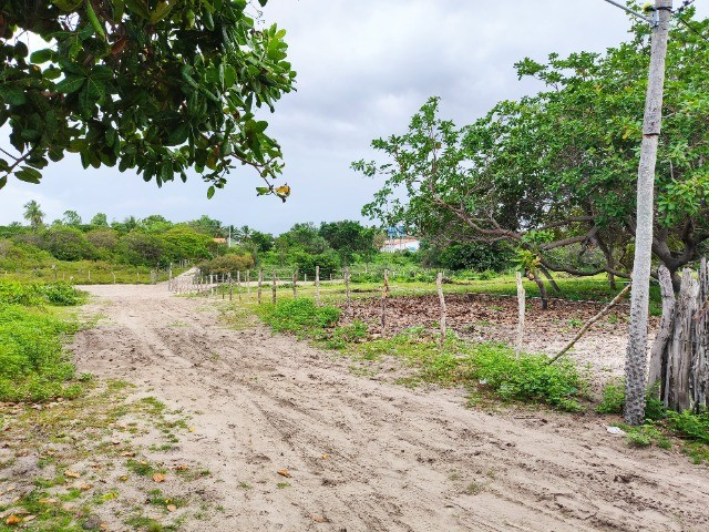 Lençóis Maranhenses - Lotes em Condomínio em Santo Amaro-MA - Foto 4