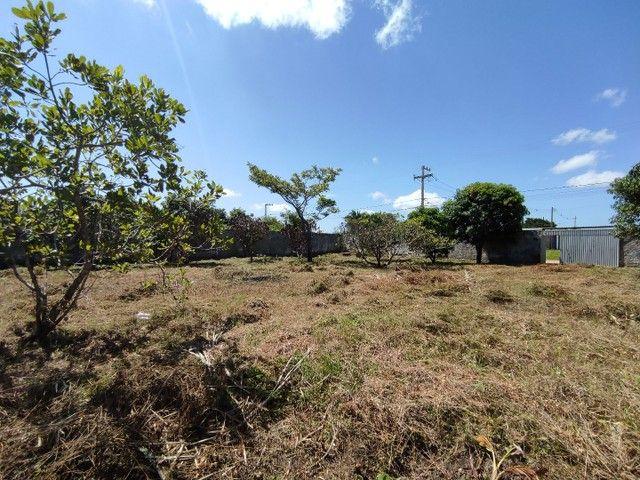 Terreno para sítio dentro da cidade - Registrado - Foto 5