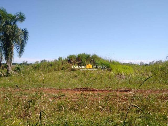 Sítio para alugar, 6500 m² por R$ 1.180,00/mês - Zona Rural - Colinas/RS - Foto 14