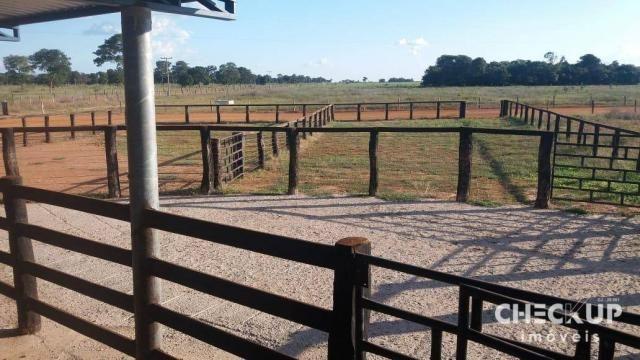 Fazenda à venda, 11.829 ha por R$ 500.000.000 - Zona Rural - Jussara/GO - Foto 20
