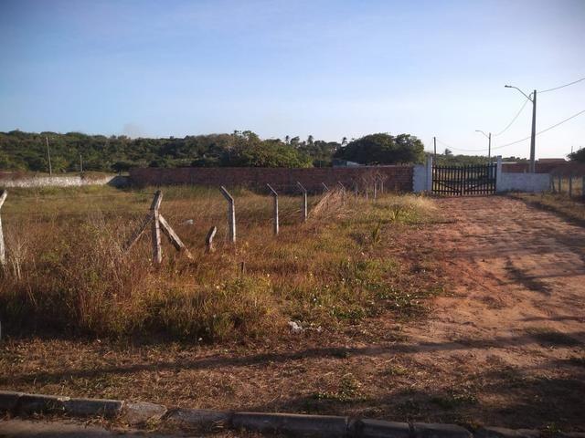 Vendo terreno no panaquatira Ribamar - Foto 5