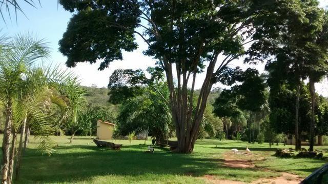 Fazenda de 4 alqueires para pecuária a venda na região de Caldas Novas GO - Foto 12