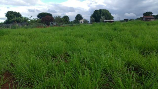 Vila rural em Valinhos , cidade Luiziana - Foto 6
