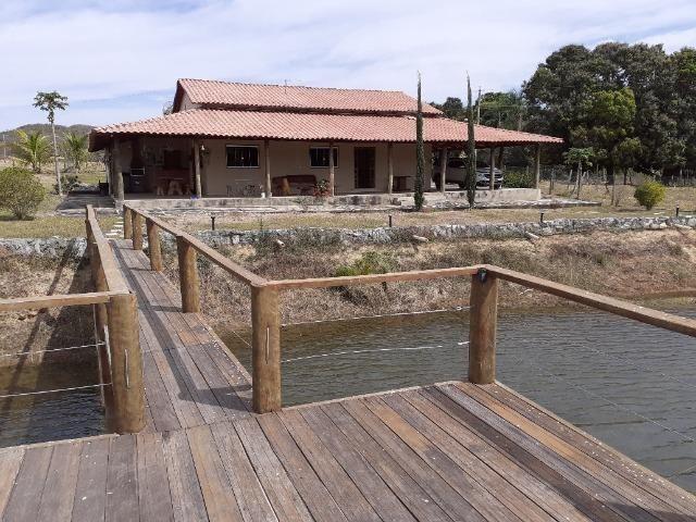 Fazenda 23 Alqueires, Formada, Plana, Terra Cultura, 1,2 Asfalto-Goiánésia - Foto 2