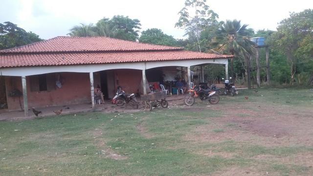 Fazenda do alagoano a venda - Foto 3