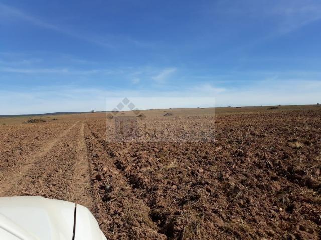 Fazenda no Mato Grosso 5.276 ha venda total - parcial ou permuta - Foto 6