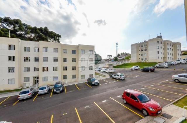Apartamento à venda com 2 dormitórios em Barreirinha, Curitiba cod:142139 - Foto 10