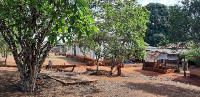 Fazenda a venda em bela vista de goias - Foto 13