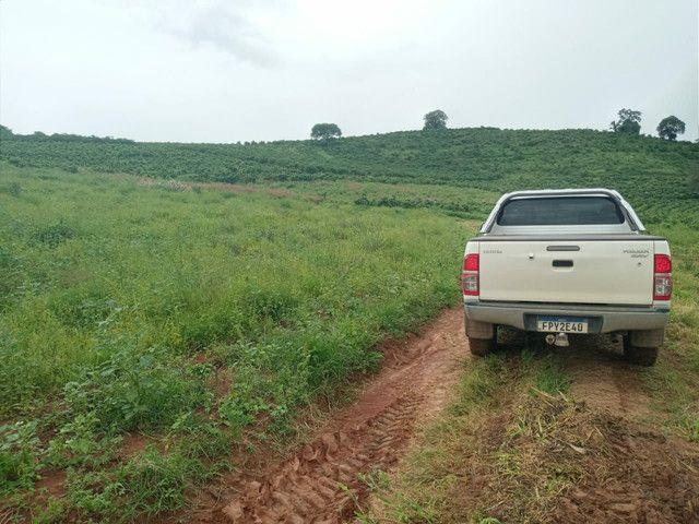 Sítio 20 Alqueires próximo a Pouso Alegre no sul de Minas Gerais  - Foto 12