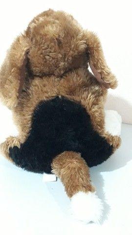Cachorro de pelúcia da coleção Mamíferos da Parmalat antigo - Foto 5