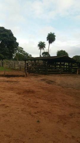 Chácara 17 alq em Araguaína 19 km do aeroporto