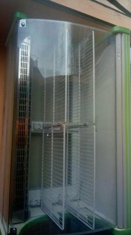 Congelador frizzer