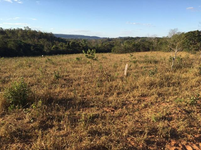 217 hectares, com 150 hectares aberto 32 km de Dom Aquino -MT