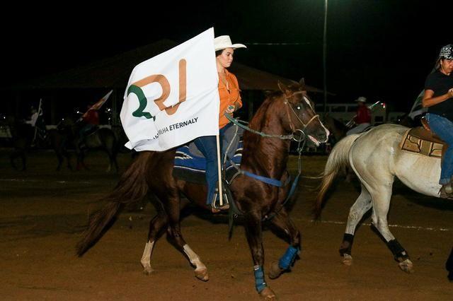 Bandeiras personalizadas para seu evento, curso, empresa etc - Foto 6