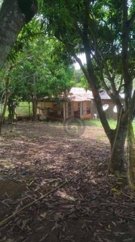 Sítio 20 ha região baú da guia mt - Foto 6
