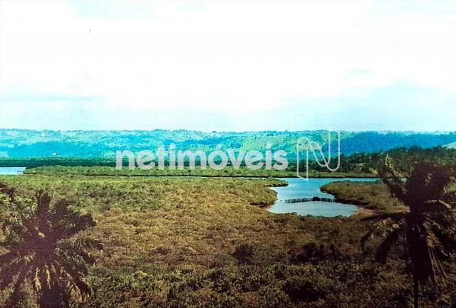 Terreno à venda em Fazenda exemplo, Cachoeira cod:766495 - Foto 2