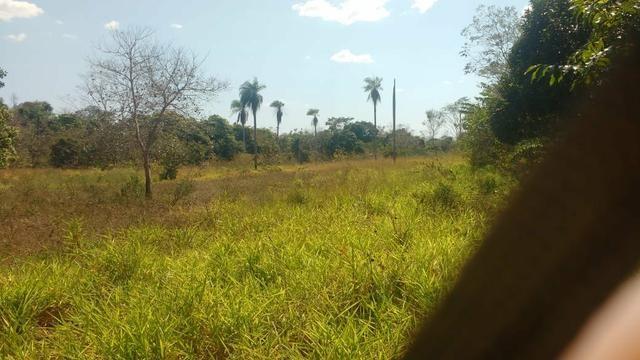 Chácara 5 ha, com Rio 70 km Campo Grande MS - Foto 9
