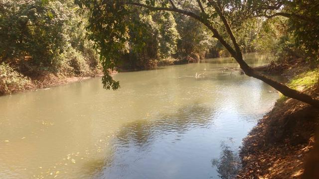 Chácara 5 ha, com Rio 70 km Campo Grande MS - Foto 5