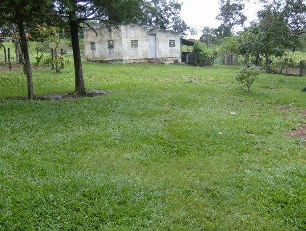 Fazenda escriturada perto de Brasília Santo Antônio Goiás formada 51 alqueires - Foto 3