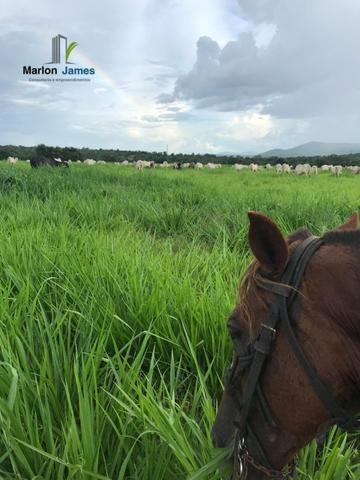 Fazenda em Uruaçu-Go - Foto 4
