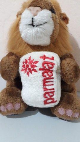 Pelúcia Leão antiga da coleção mamíferos da Parmalat  - Foto 2
