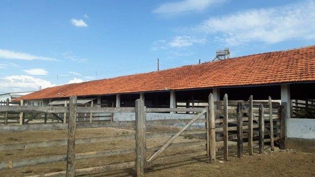 Fazenda com 189,17 Alqueires no Sul de Minas. - Foto 4