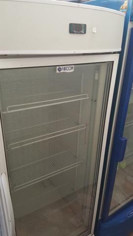 Freezer Vertical Congelamento FRICON