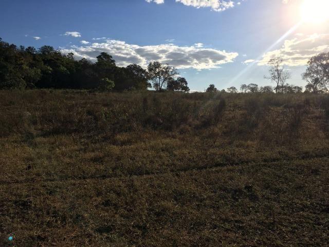 217 hectares, com 150 hectares aberto 32 km de Dom Aquino -MT - Foto 13
