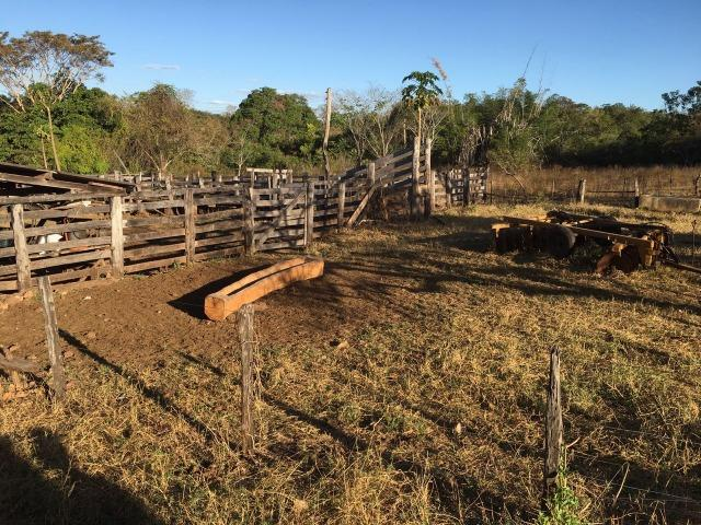 217 hectares, com 150 hectares aberto 32 km de Dom Aquino -MT - Foto 20