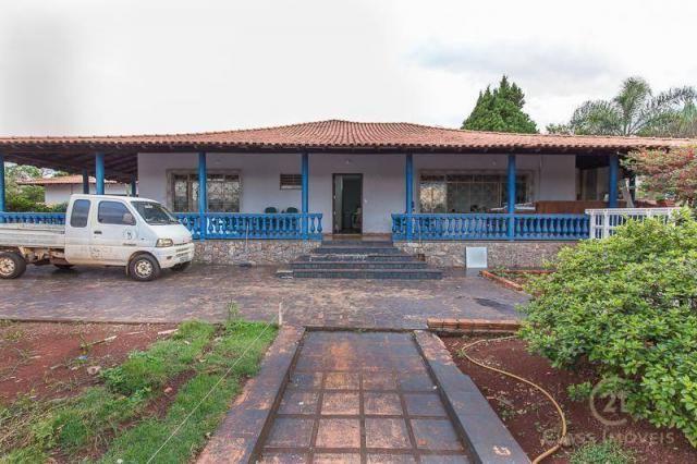 Chácara com 3 dormitórios à venda, 3005 m² - jardim morumbi - londrina/pr - Foto 3