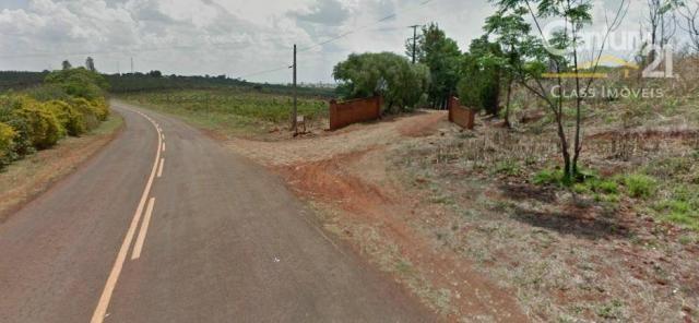 Sítio rural à venda, gleba palhano, londrina. - Foto 3