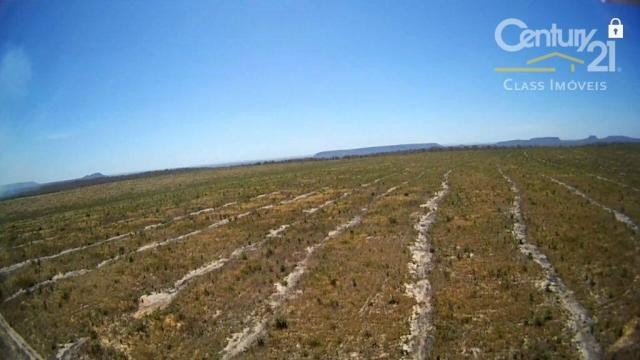 Fazenda rural à venda, zona rural, loreto. - Foto 5