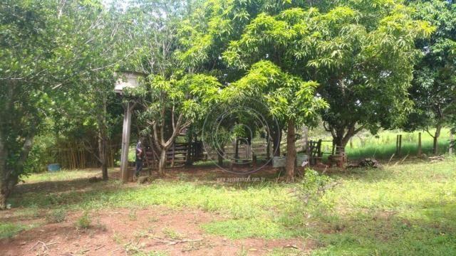 Sítio 20 ha região baú da guia mt - Foto 15