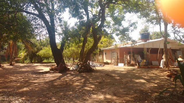 Chácara 5 ha, com Rio 70 km Campo Grande MS - Foto 3