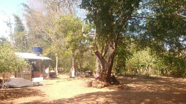 Chácara 5 ha, com Rio 70 km Campo Grande MS - Foto 10