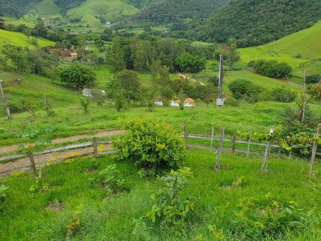 Sítio de 14.5 Alqueires em Maria da Fé - Sul de Minas - Foto 19