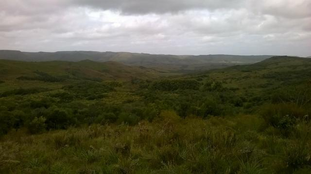 Fazenda 342/ha