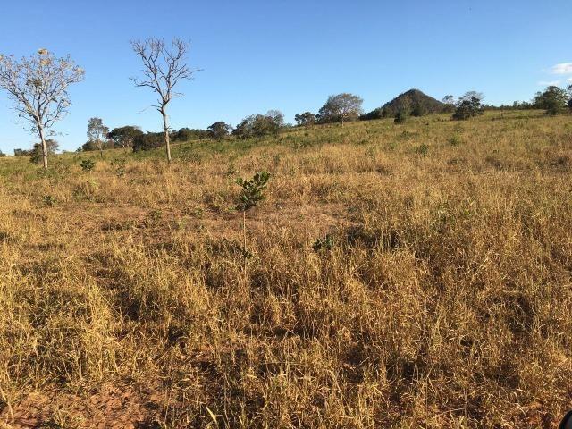 217 hectares, com 150 hectares aberto 32 km de Dom Aquino -MT - Foto 16