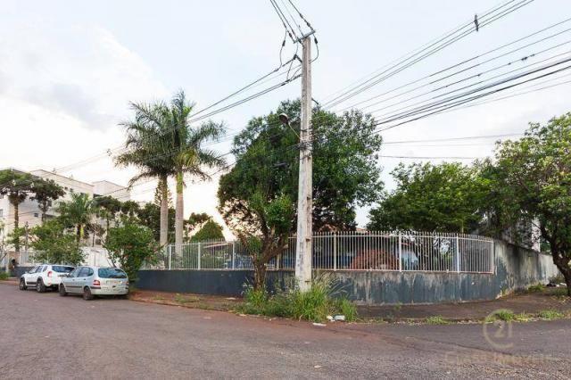Chácara com 3 dormitórios à venda, 3005 m² - jardim morumbi - londrina/pr