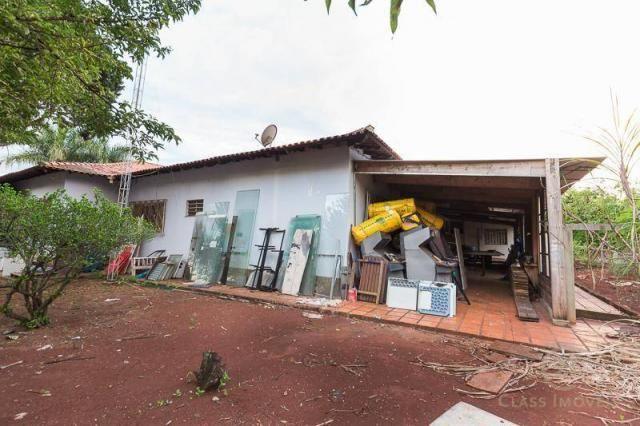 Chácara com 3 dormitórios à venda, 3005 m² - jardim morumbi - londrina/pr - Foto 17