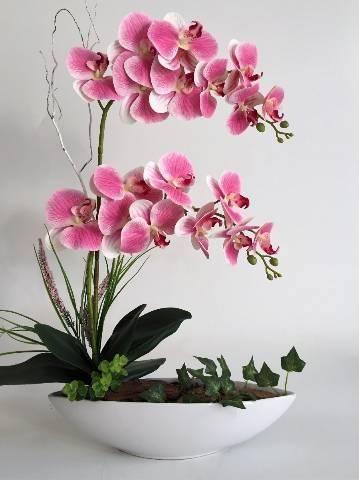 Curso de orquídeas para vendas - Foto 3