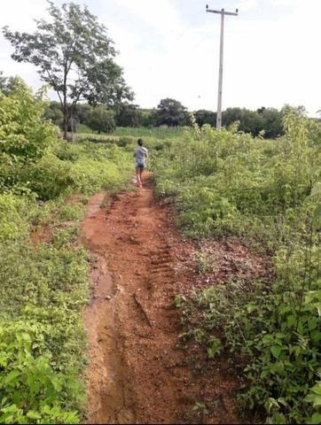 Fazenda em forquilha 130 hectares - Foto 5
