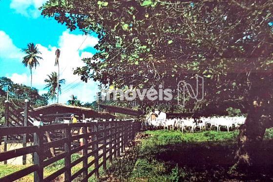 Terreno à venda em Fazenda exemplo, Cachoeira cod:766495 - Foto 10