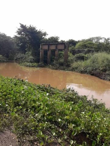 Fazenda em forquilha 130 hectares - Foto 7