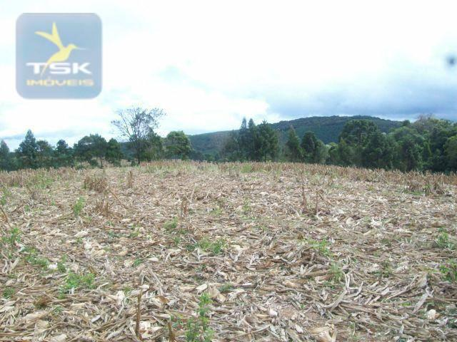Fazenda em Quitandinha - (Cerrinho) - - Foto 4