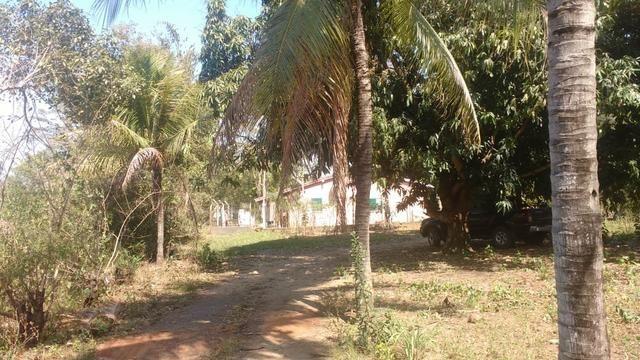 Chácara 5 ha, com Rio 70 km Campo Grande MS - Foto 8
