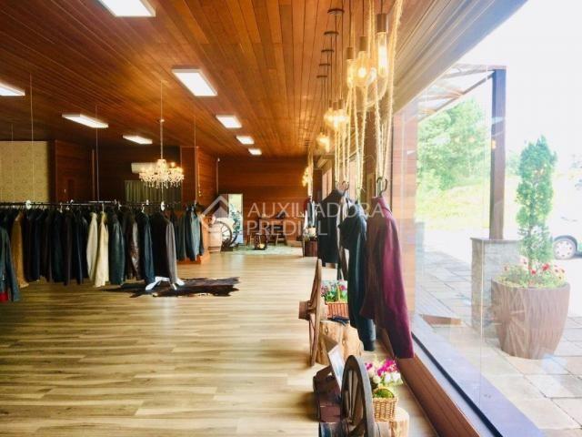 Loja comercial para alugar em Centro, Canela cod:286915 - Foto 5