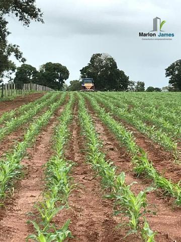 Fazenda em Uruaçu-Go - Foto 5