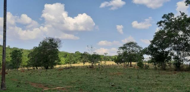 Fazenda a venda em bela vista de goias - Foto 3