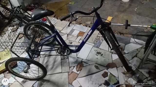 Ticiclo  - Foto 3